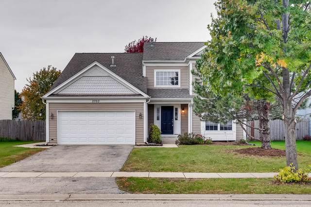 2703 Sierra Avenue, Plainfield, IL 60586 (MLS #10549877) :: Century 21 Affiliated