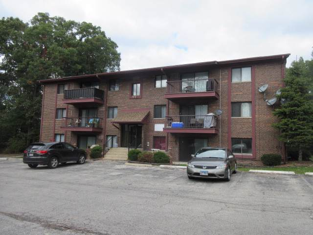 8473 Archer Avenue #104, Willow Springs, IL 60480 (MLS #10550022) :: The Wexler Group at Keller Williams Preferred Realty