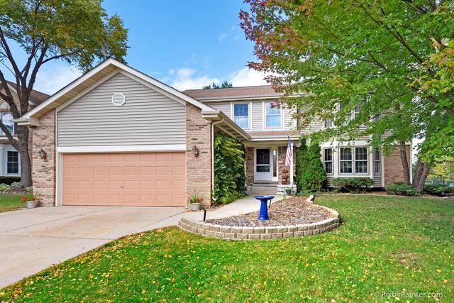 317 Orchard Lane, Bloomingdale, IL 60108 (MLS #10550030) :: Ani Real Estate
