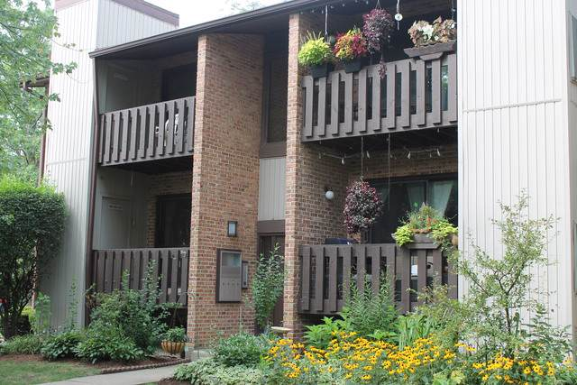 324 Sheridan Drive 2A, Willowbrook, IL 60527 (MLS #10550049) :: Century 21 Affiliated