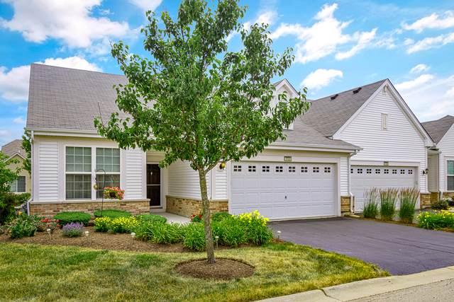1731 Francis Drive, Pingree Grove, IL 60140 (MLS #10550050) :: Baz Realty Network | Keller Williams Elite