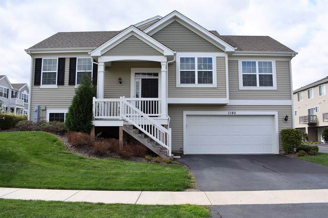 1190 Alta Vista Drive, Pingree Grove, IL 60140 (MLS #10550073) :: Baz Realty Network | Keller Williams Elite