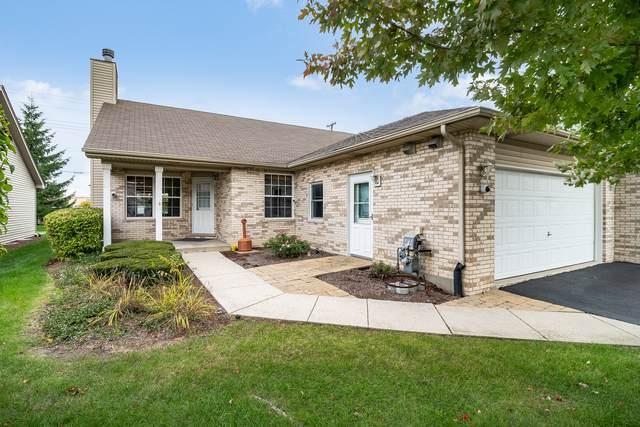 1005 Mikasa Court, Joliet, IL 60431 (MLS #10550092) :: Ani Real Estate