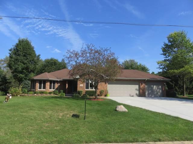 320 N Anderson Road, New Lenox, IL 60451 (MLS #10550546) :: Lewke Partners