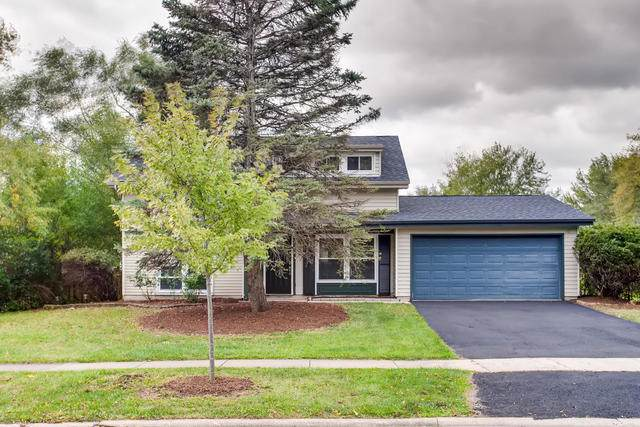 205 Lexington Drive, Bolingbrook, IL 60440 (MLS #10550679) :: The Wexler Group at Keller Williams Preferred Realty