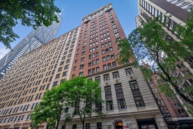 222 E Chestnut Street 14A, Chicago, IL 60611 (MLS #10550739) :: Property Consultants Realty