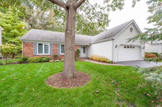 220 Lexington Avenue, Fox River Grove, IL 60021 (MLS #10551088) :: Property Consultants Realty