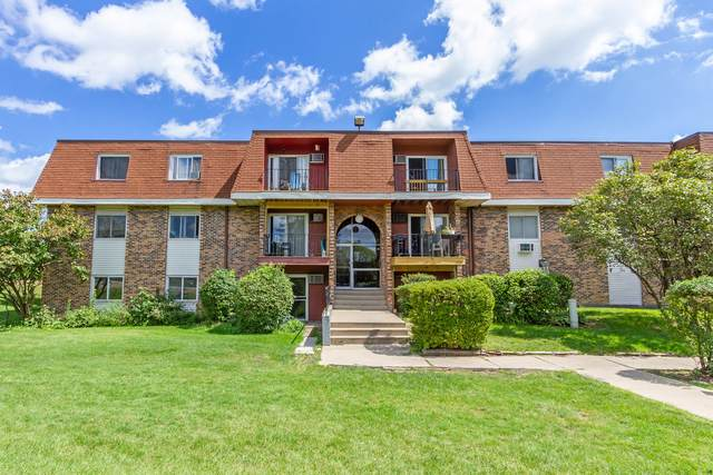 510 Hill Drive #108, Hoffman Estates, IL 60169 (MLS #10551109) :: Property Consultants Realty