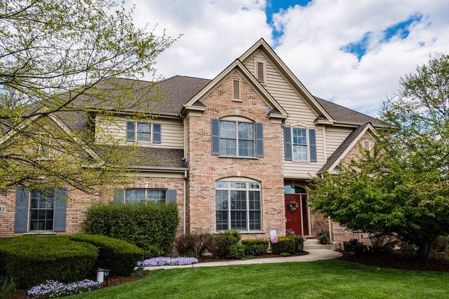 24815 N Wildberry Bend, Cary, IL 60013 (MLS #10551210) :: Property Consultants Realty