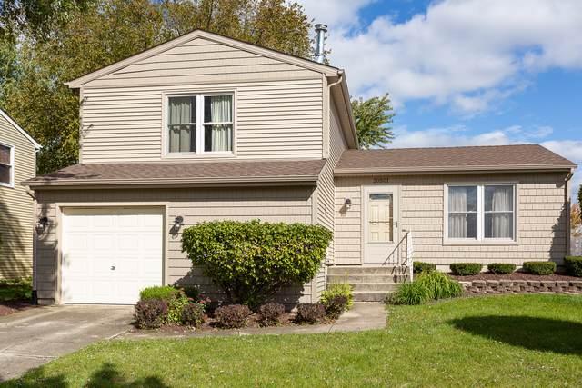 20501 S Acorn Ridge Drive, Frankfort, IL 60423 (MLS #10551285) :: Baz Realty Network | Keller Williams Elite
