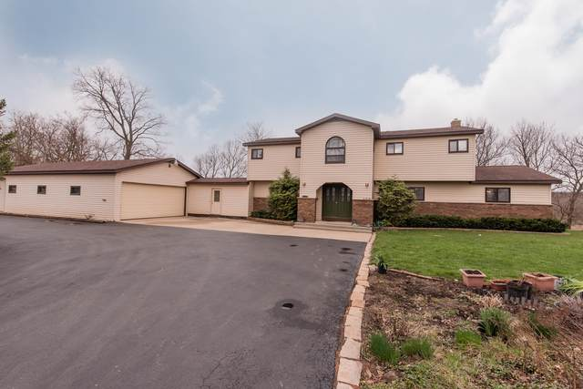 909 Nippersink Road, Spring Grove, IL 60081 (MLS #10551343) :: Property Consultants Realty