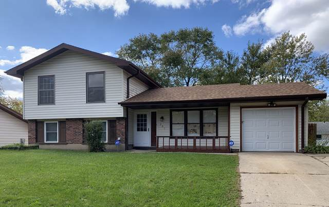 201 N Schmidt Road, Bolingbrook, IL 60440 (MLS #10551491) :: Angela Walker Homes Real Estate Group