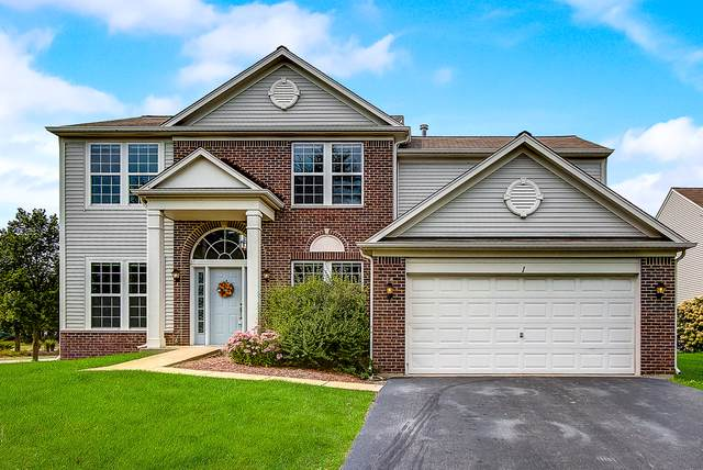 1 Pampas Court, Bolingbrook, IL 60490 (MLS #10551643) :: Angela Walker Homes Real Estate Group