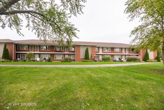 1107 Holiday Lane #17, Des Plaines, IL 60016 (MLS #10551733) :: Ryan Dallas Real Estate