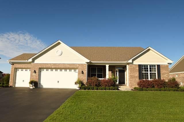 2067 Stapleton Road, New Lenox, IL 60451 (MLS #10551819) :: The Wexler Group at Keller Williams Preferred Realty