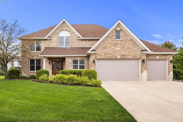 798 Merrill New Road, Sugar Grove, IL 60554 (MLS #10551879) :: Property Consultants Realty