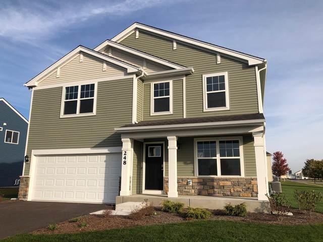 248 Liszka Lane, Oswego, IL 60543 (MLS #10551933) :: John Lyons Real Estate