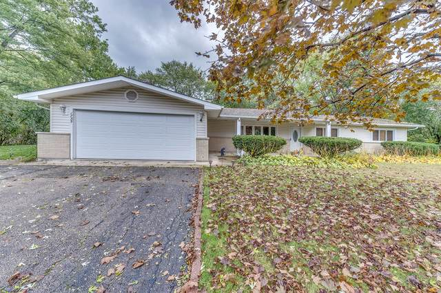 1735 Indian Hill Drive, Roselle, IL 60172 (MLS #10551973) :: Touchstone Group