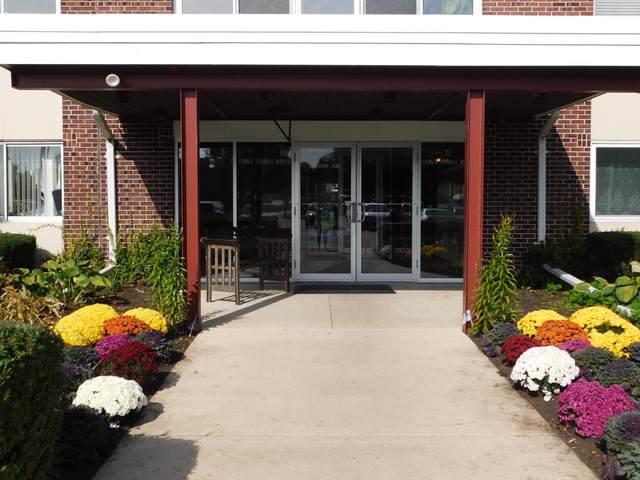 100 Deborah Lane 18A, Wheeling, IL 60090 (MLS #10552122) :: Berkshire Hathaway HomeServices Snyder Real Estate