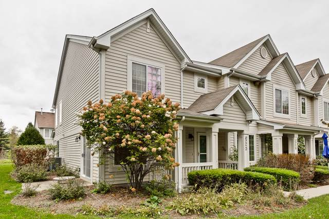 520 Blue Springs Drive 45-3, Fox Lake, IL 60020 (MLS #10552160) :: Ryan Dallas Real Estate