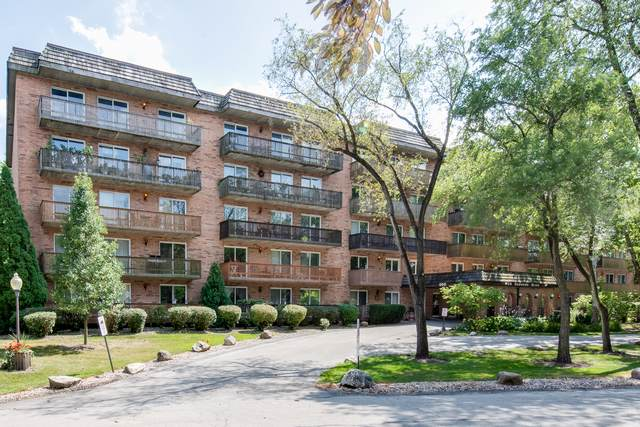500 Redondo Drive #110, Downers Grove, IL 60516 (MLS #10552227) :: The Wexler Group at Keller Williams Preferred Realty
