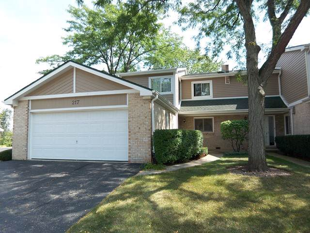 217 W Golfview Terrace, Palatine, IL 60067 (MLS #10552449) :: Property Consultants Realty