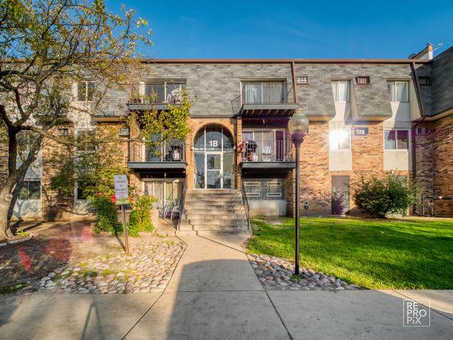 1 E Dundee Quarter Drive #201, Palatine, IL 60074 (MLS #10552643) :: Property Consultants Realty