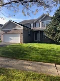 1159 Clover Hill Lane, Elgin, IL 60120 (MLS #10552667) :: Angela Walker Homes Real Estate Group