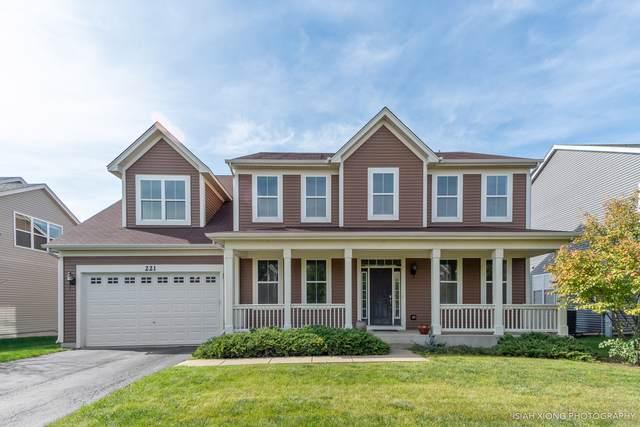 221 Loradale Road, Oswego, IL 60543 (MLS #10552715) :: Baz Realty Network | Keller Williams Elite