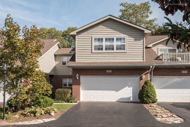 107 Willow Creek Lane, Willow Springs, IL 60480 (MLS #10552727) :: The Wexler Group at Keller Williams Preferred Realty