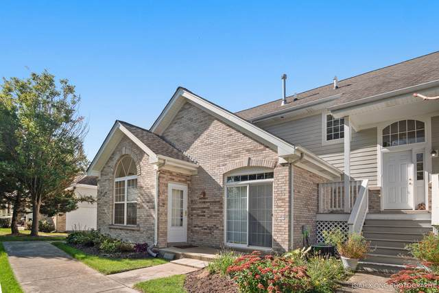 107 Hillwood Place, Aurora, IL 60506 (MLS #10552805) :: Ryan Dallas Real Estate