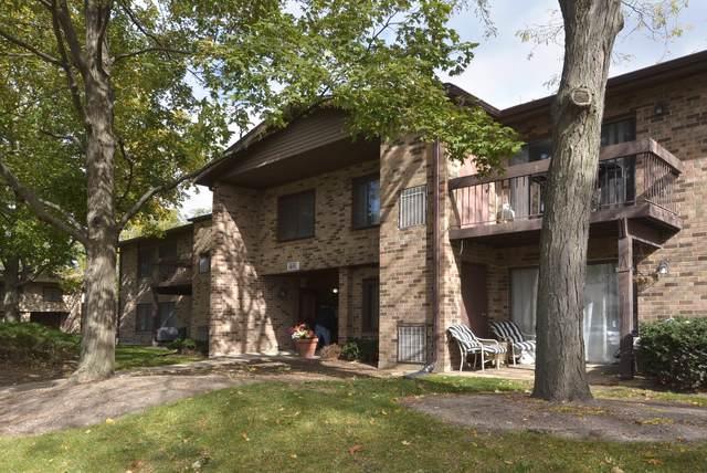 1120 E Randville Drive 202C, Palatine, IL 60074 (MLS #10552909) :: Baz Realty Network | Keller Williams Elite