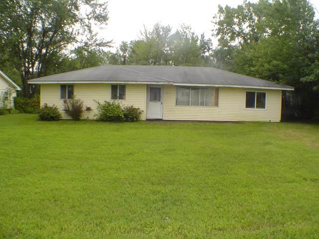 543 W Stanton Lane, Crete, IL 60417 (MLS #10553013) :: Property Consultants Realty