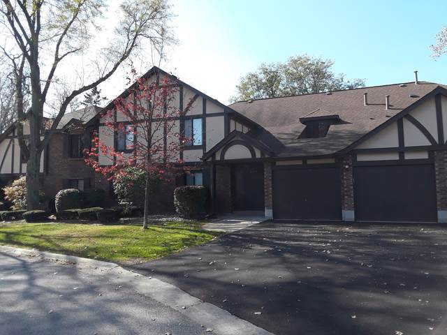 8254 Chestnut Drive 41B, Palos Hills, IL 60465 (MLS #10553031) :: The Wexler Group at Keller Williams Preferred Realty