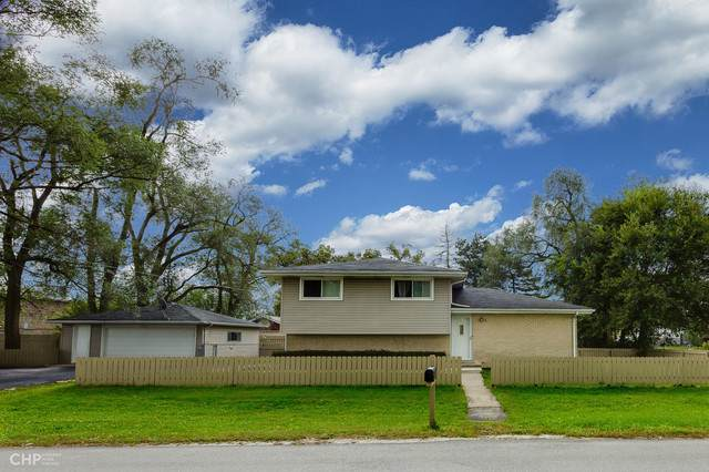 10601 S 80th Court, Palos Hills, IL 60465 (MLS #10553081) :: The Wexler Group at Keller Williams Preferred Realty