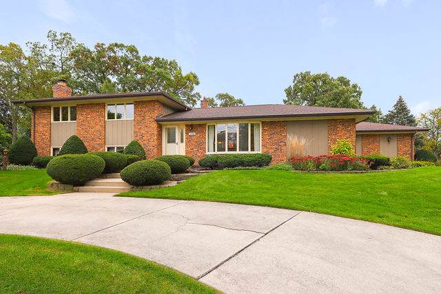 12501 S Nashville Avenue, Palos Heights, IL 60463 (MLS #10553150) :: The Wexler Group at Keller Williams Preferred Realty