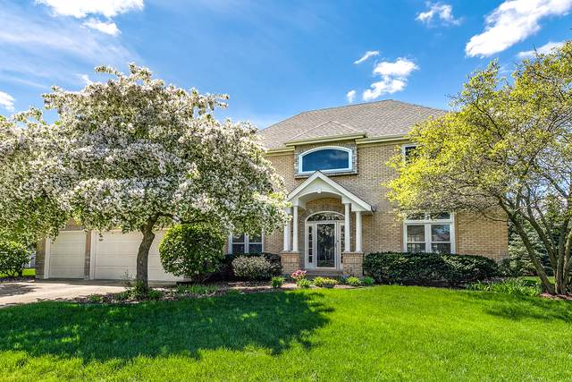 1431 Frenchmans Bend Drive, Naperville, IL 60564 (MLS #10553365) :: The Wexler Group at Keller Williams Preferred Realty
