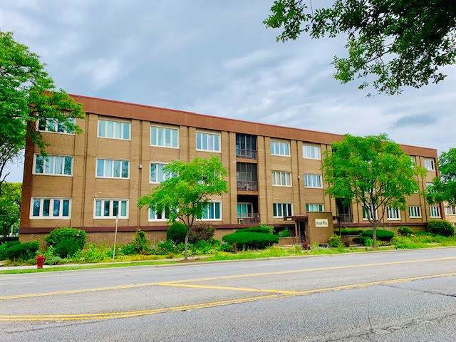 10048 S Pulaski Road 2E, Oak Lawn, IL 60453 (MLS #10553448) :: The Wexler Group at Keller Williams Preferred Realty