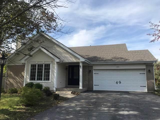 882 Wilshire Lane, Crete, IL 60417 (MLS #10553489) :: Property Consultants Realty
