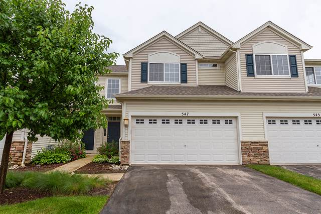 547 Telluride Drive, Gilberts, IL 60136 (MLS #10553576) :: Touchstone Group