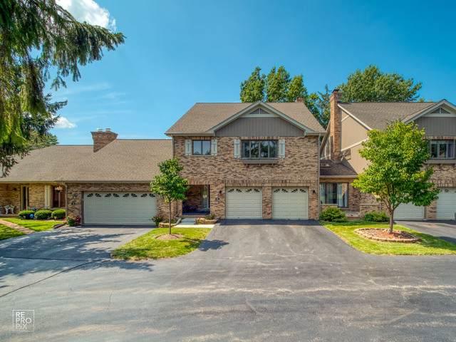 46 Castle Rock Lane, Bloomingdale, IL 60108 (MLS #10553586) :: John Lyons Real Estate