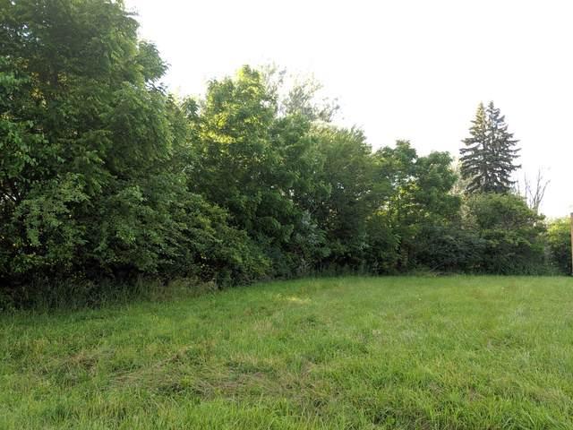 1329 N Cedar Road, New Lenox, IL 60451 (MLS #10553592) :: The Wexler Group at Keller Williams Preferred Realty