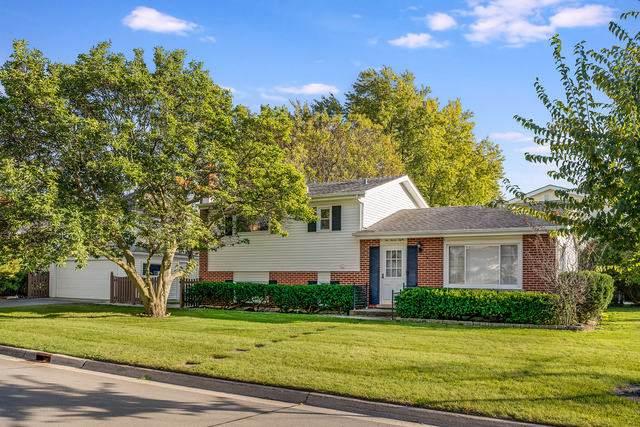 238 E Gladys Avenue, Elmhurst, IL 60126 (MLS #10553683) :: John Lyons Real Estate