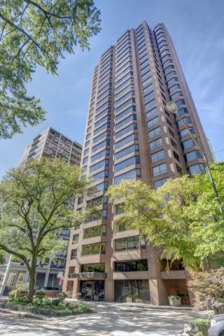 1410 N State Parkway 19A, Chicago, IL 60610 (MLS #10553834) :: Touchstone Group