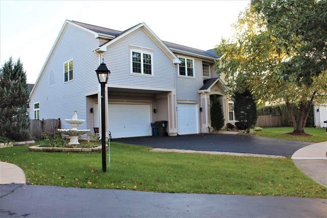 6691 Majestic Way, Carpentersville, IL 60110 (MLS #10554049) :: Ryan Dallas Real Estate