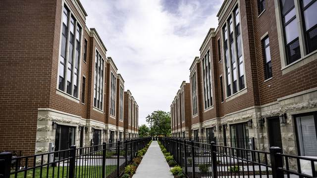 2259 W Coulter Street #3, Chicago, IL 60608 (MLS #10554130) :: Berkshire Hathaway HomeServices Snyder Real Estate