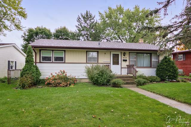 131 Wagner Drive, Cary, IL 60013 (MLS #10554225) :: The Wexler Group at Keller Williams Preferred Realty