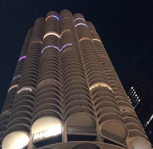 300 N State Street #5234, Chicago, IL 60654 (MLS #10554244) :: Property Consultants Realty