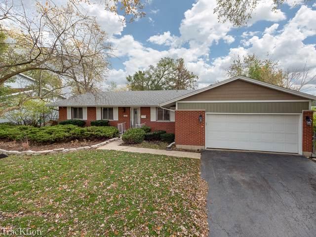 6025 Sherman Drive, Woodridge, IL 60517 (MLS #10554256) :: The Dena Furlow Team - Keller Williams Realty