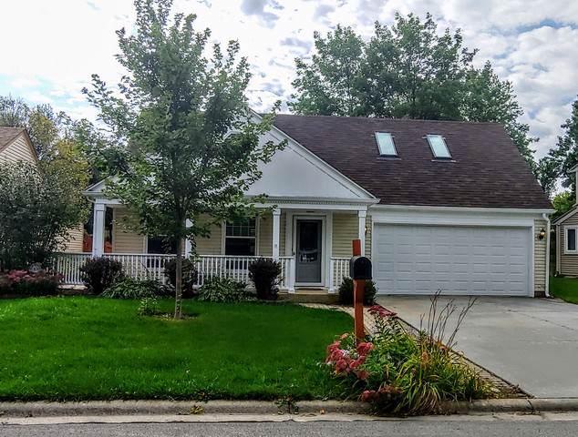 6635 Fernwood Drive, Lisle, IL 60532 (MLS #10554365) :: The Dena Furlow Team - Keller Williams Realty